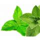E-liquide goût saveur double menthe pour votre cigarette électronique
